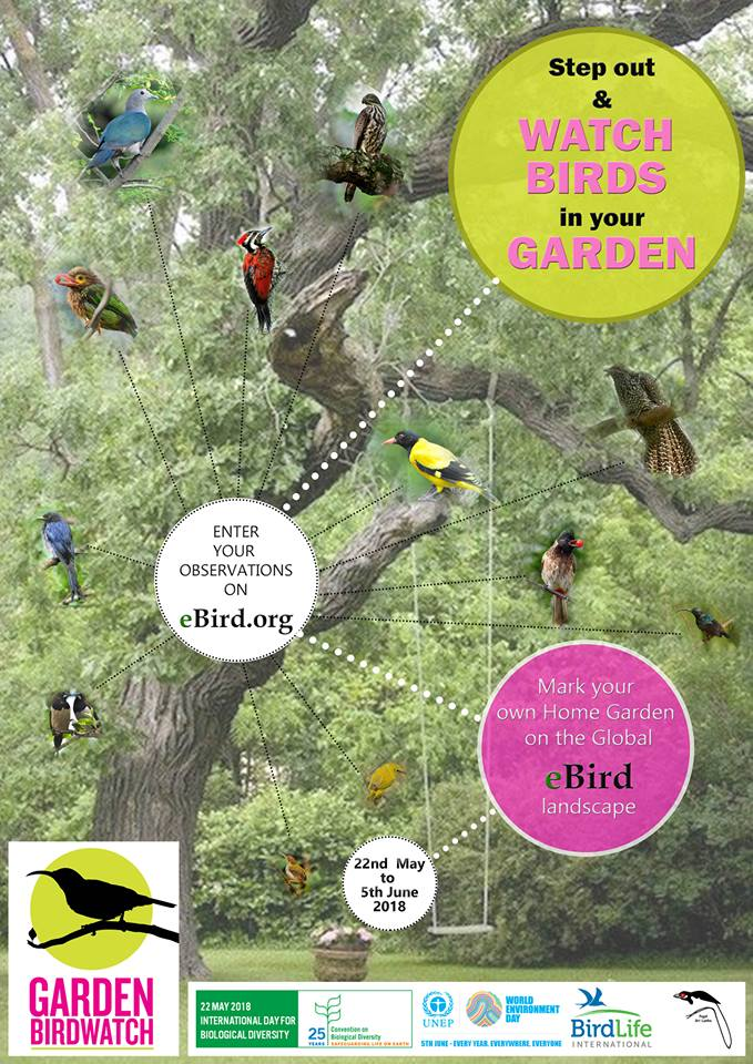 GardenBirdWatch poster