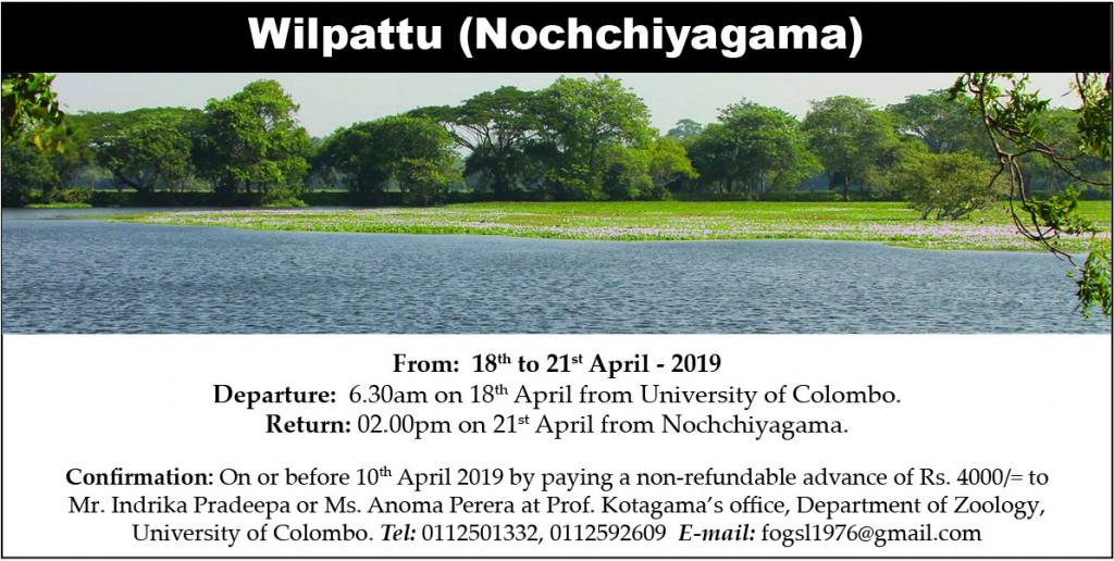 Wilpattu (Nochchiyagama) 2019