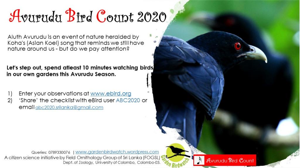 Avurudu Bird Count 2020